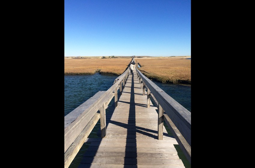 The Boardwalk--across Mill Creek salt marsh to ocean